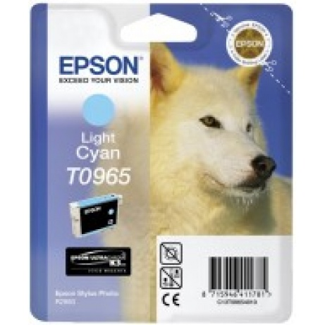 EPSON ink bar Stylus Photo R2880 - light Cyan